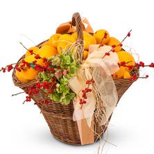비타민 오렌지 귤바구니