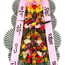 축하3단(알뜰형상품)BA