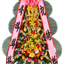 축하3단(알뜰형상품)MP