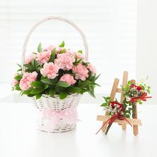 부모님사랑감동^^♬(코사지2개무료)